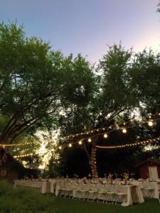 sunset reception
